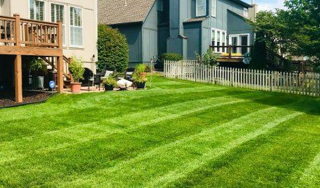 Lawn mowing in Olathe